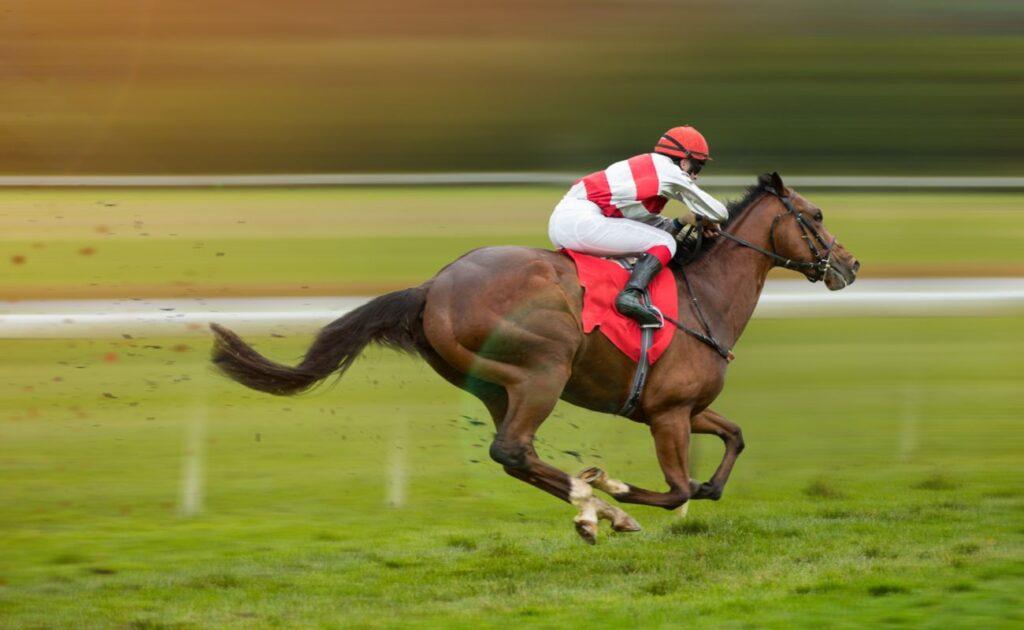 A jockey rides a horse along a grass race track.