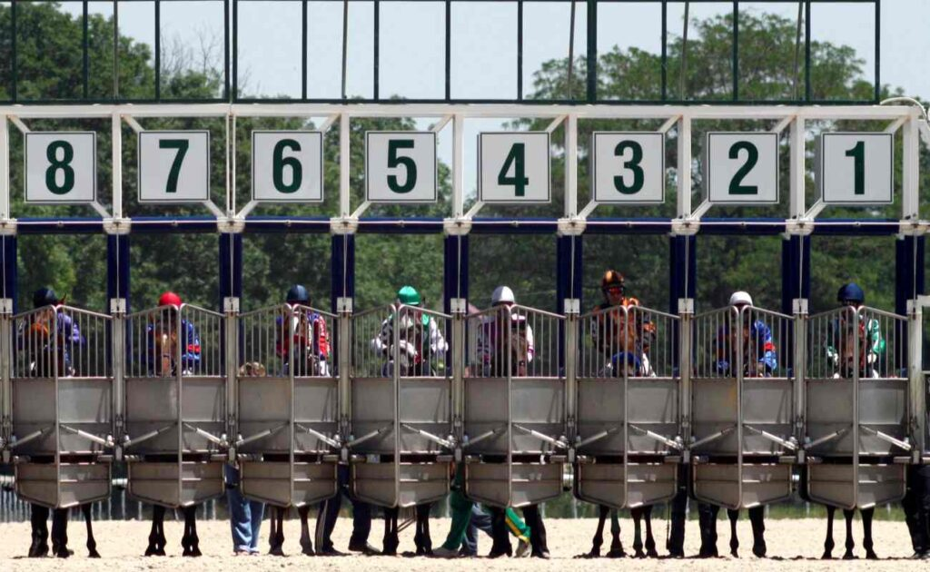 Several horses and their jockeys wait behind closed starting gates in a race that's about to begin.