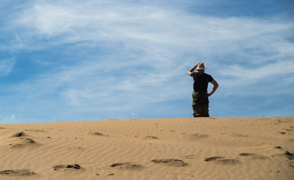 A man stands on top of a dune and surveys the landscape.