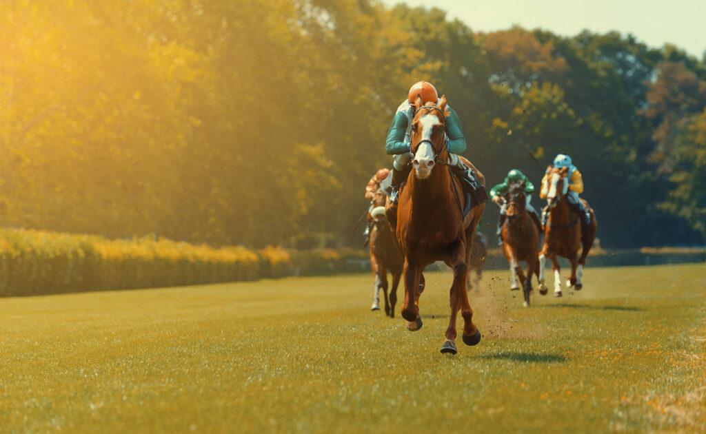 Four horses and their jockeys racing around a race track.