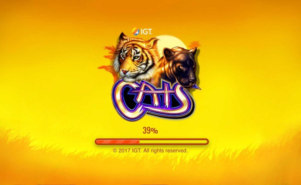 Cats online slot game yellow background