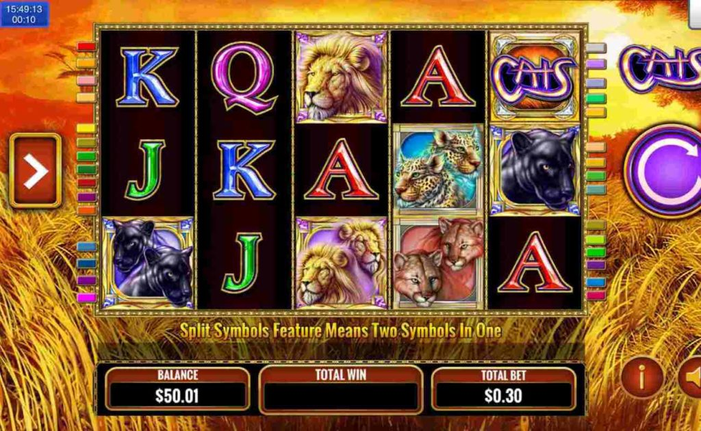 Cats online slot game featuring icons