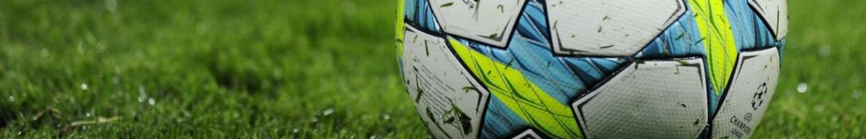 French midfielder Franck Ribery soccer shoe on the soccer ball