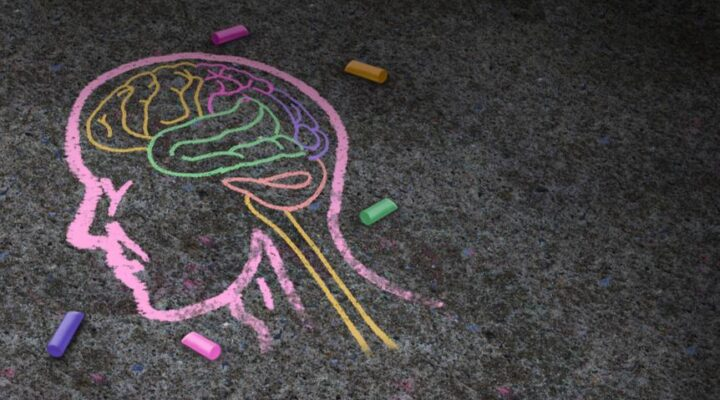 A chalk drawing of a head with a brain inside.
