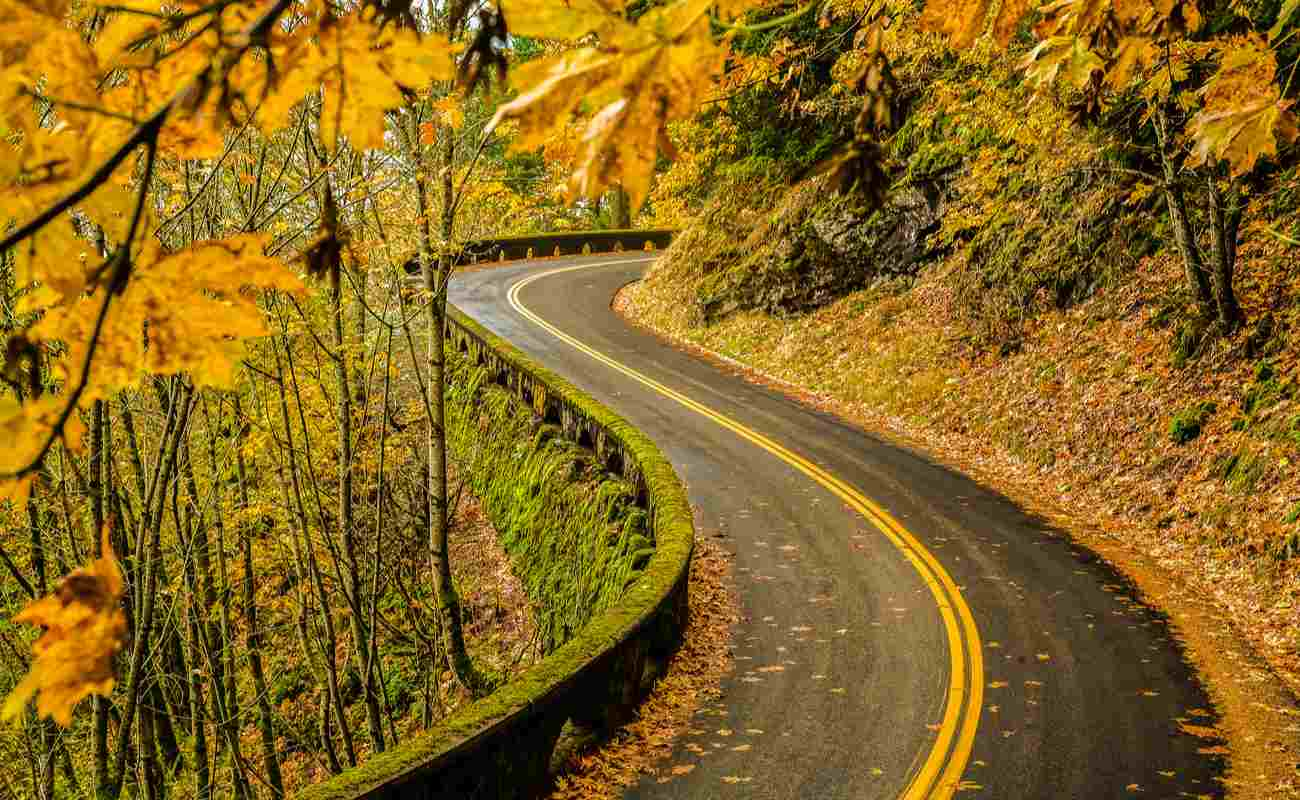 Old Columbia River Highway in the Columbia River Gorge in the fall.