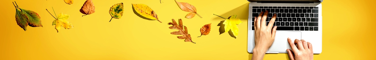 Hands typing on a laptop with a yellow background surrounded by autumn leaves.