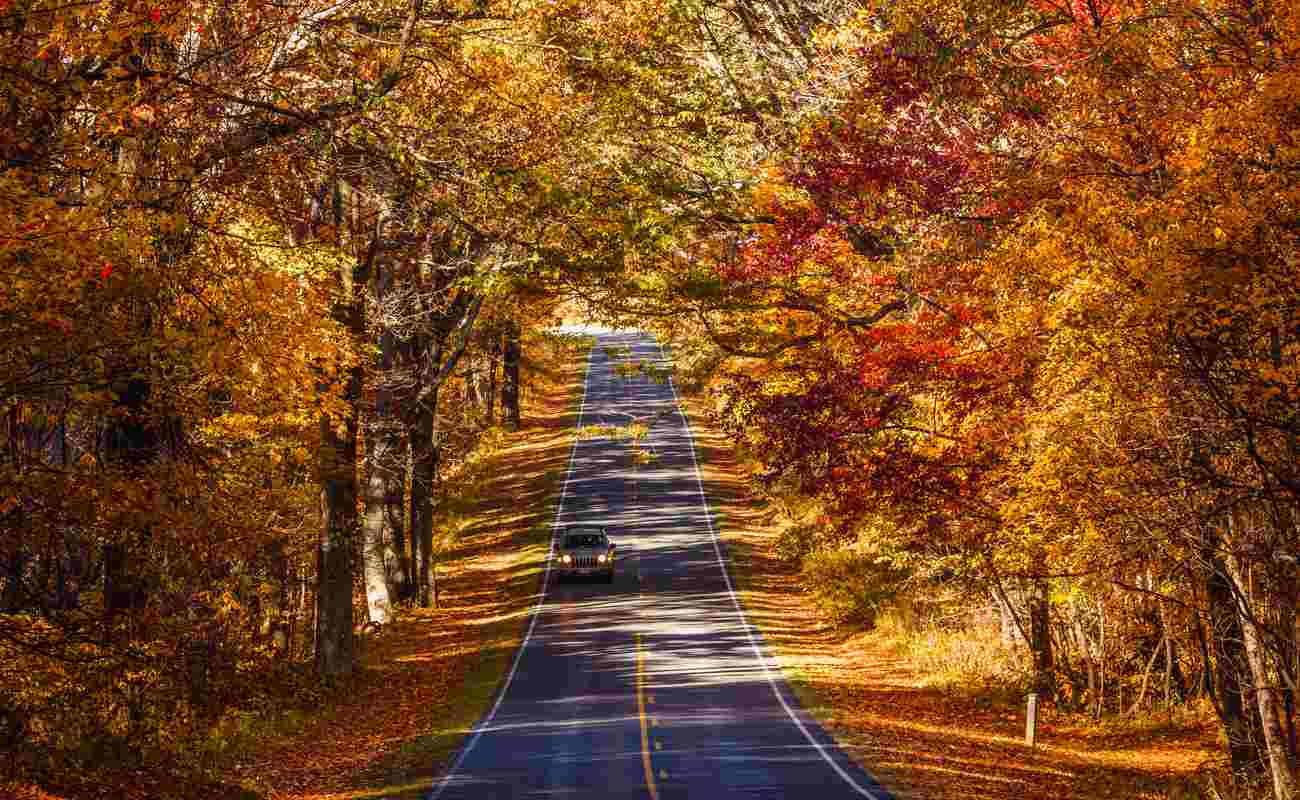 Car driving down Skyline Drive in Shenandoah National Park in the fall.