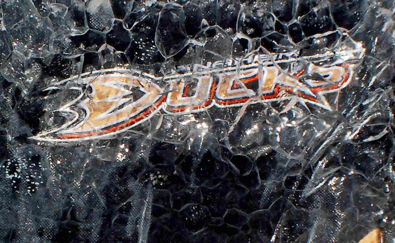 Anaheim Ducks jersey in an ice block
