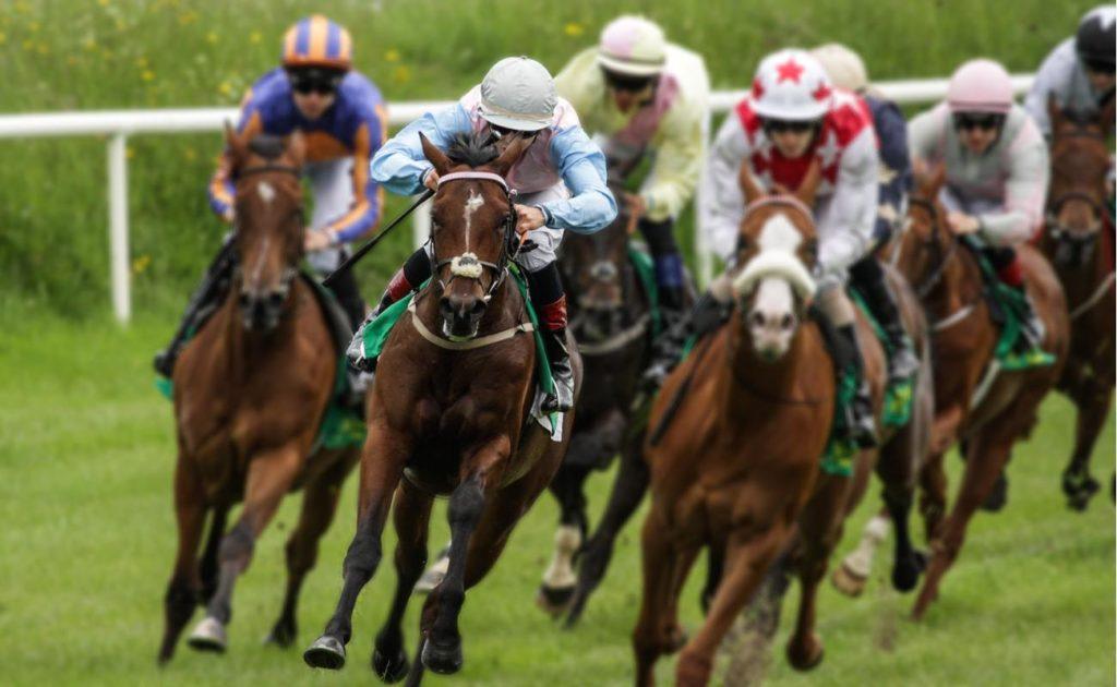 Head-on view of galloping racehorses and jockeys racing